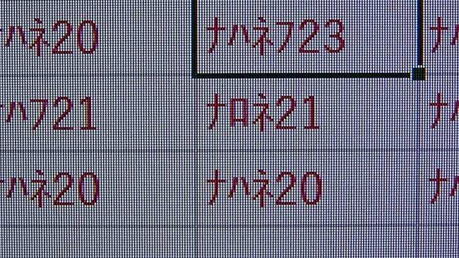zzz02691.jpg
